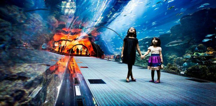 1-dubai-aquarium-1-2