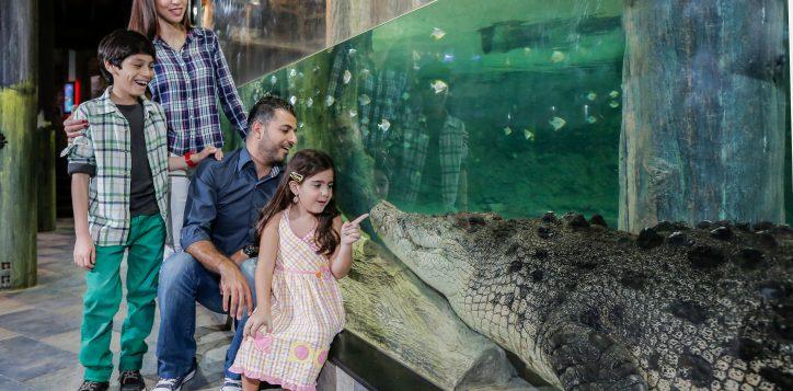 king-croc-family-2